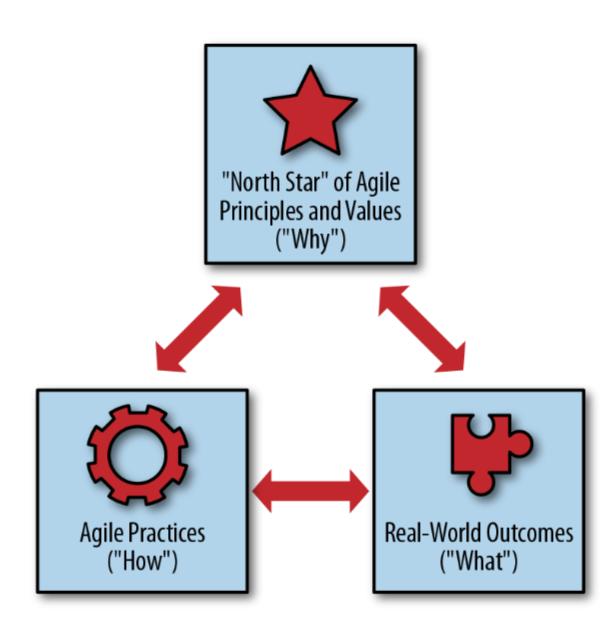 enfoque holístico agile